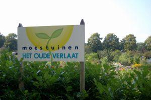 Moestuin-2011